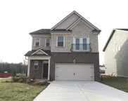 1001 Lonergan Circle #67, Spring Hill image