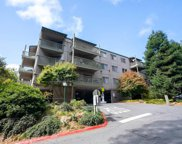 368 Imperial Way Unit 343, Daly City image