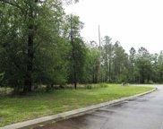 349 Cypress Flat Ct., Conway image