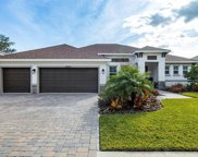 14141 Tomentosa Ave, Riverview image