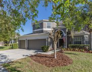 11342 Callaway Pond Drive, Riverview image