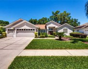 6033 Falconbridge Place, Mount Dora image
