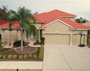 11705 Belle Haven Drive, New Port Richey image