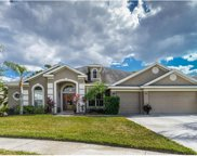 22959 Collridge Drive, Land O Lakes image