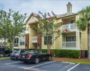 1600 Long Grove Drive Unit #313, Mount Pleasant image