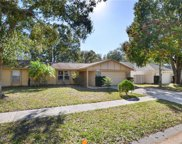 15127 Willowdale Road, Tampa image