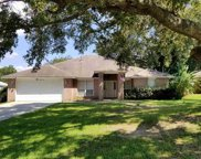 10950 Country Ostrich Dr, Pensacola image