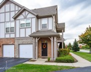 250 Rosehall Drive Unit 220, Lake Zurich image