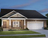 13321 White Cloud  Court, Camby image