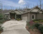 6 Goldeneye Court, Landrum image