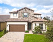 10725 Berry Creek Road, Orlando image