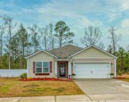 1013 McCall Loop, Conway image