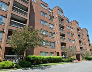 600 Naples Court Unit 207, Glenview image