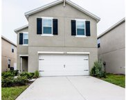 12240 Fawn Brindle Street, Riverview image