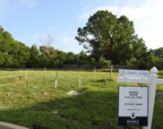 422 Dragonfly Ct Lot 11, Franklin image