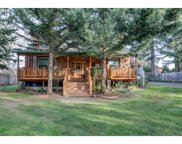 16030 SWAN  AVE, Oregon City image