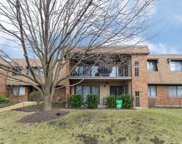 110 Old Oak Drive Unit 236, Buffalo Grove image