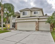 8275 Swann Hollow Drive, Tampa image