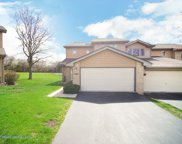 16647 Grants Trail, Orland Park image