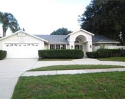 1411 Holleman Drive, Valrico image