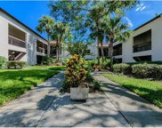 2971 Estancia Boulevard Unit 325, Clearwater image