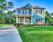 1050 Fiddlehead Way, Myrtle Beach image