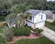 4163 Mallard Drive, Safety Harbor image