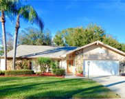 20 Citrus Court, Palm Harbor image