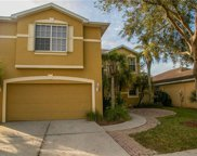 8435 Hollow Brook Cir, Naples image