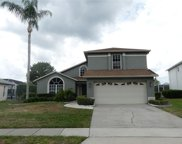 2806 Drifting Lilly Loop, Kissimmee image