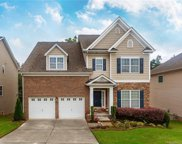 14034  Green Birch Drive, Pineville image