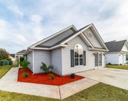 501 Mallard Lake Circle, Myrtle Beach image