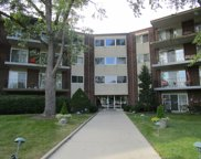 5540 Walnut Avenue Unit 26A, Downers Grove image