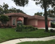 4859 Harbor Woods Drive, Palm Harbor image