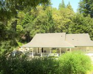 12022 Mays Canyon Road, Guerneville image