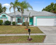 704 Butterfly Creek Drive, Ocoee image