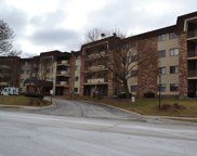 3350 North Carriageway Drive Unit 111, Arlington Heights image