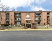720 Weidner Road Unit 107, Buffalo Grove image