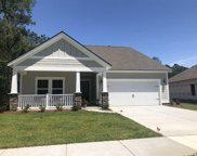 2160 Blue Crane Circle, Myrtle Beach image