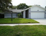 11904 Steppingstone Boulevard, Tampa image
