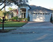 16253 Nottingham Park Way, Tampa image