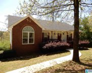129 Mobile Ave, Trussville image