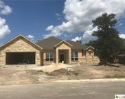 1229 Meadow Breeze, Seguin image