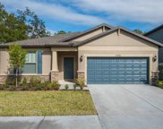 9306 Grand Harvest Court, Riverview image
