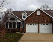 14677 Amberleigh Hill, Chesterfield image