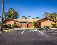 6343 Royal Woods DR, Fort Myers image