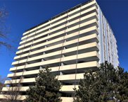 1029 East 8th Avenue Unit 607, Denver image