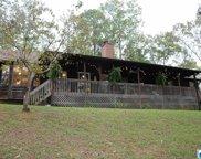 9018 Manley Vines Camp Rd, Bessemer image