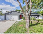 561 Hibiscus Road, Casselberry image