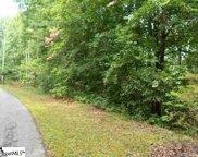 364 Gauley Falls Road, Pickens image